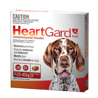 HEARTGARD PLUS CHEWABLE 23-45KG BROWN 6'S