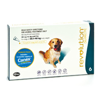 Revolution + Canex (Teal) 6S Dog 20.1-40Kg