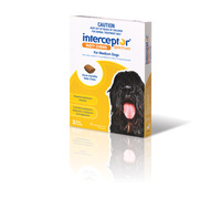 INTERCEPTOR CHEW YELLOW MED 3s