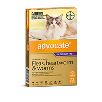 Advocate Flea & Wormer Spot on for Cats over 4kg - 3-Pack