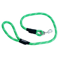 Climbers Dog Leash - Green 4 Feet